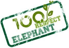 elephant-6