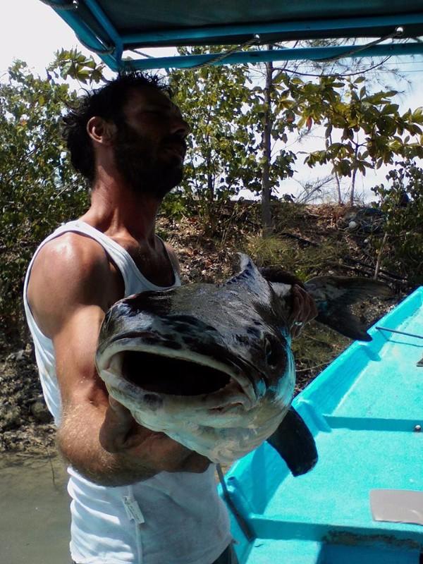 Attack-Fishing-Tour-Pêche-Sportive-au-gros-à-Koh-Samui-Phangan-Tao-9