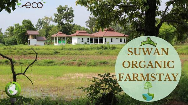 Home-Suwan-Organic-Farmstay-1