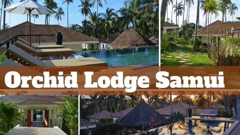 Orchid-Lodge-Samui