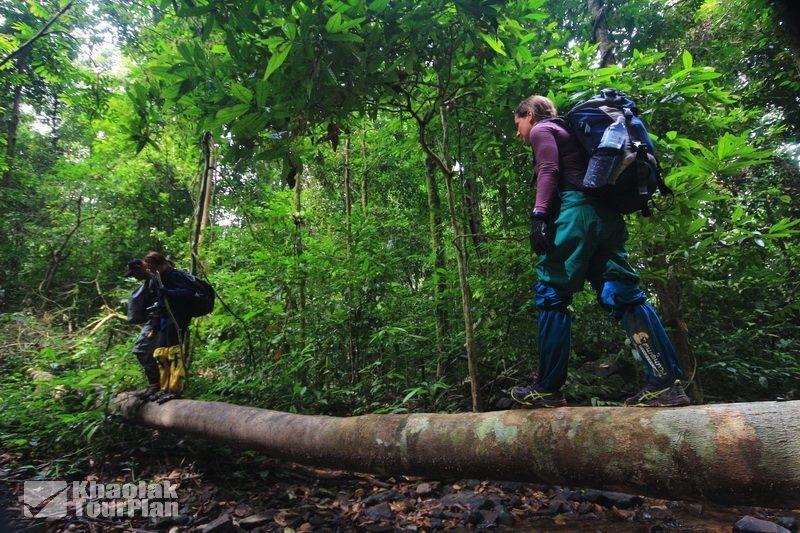 Khaolak-Tour-Plan-Agence-de-voyage-à-Khao-Lak-9
