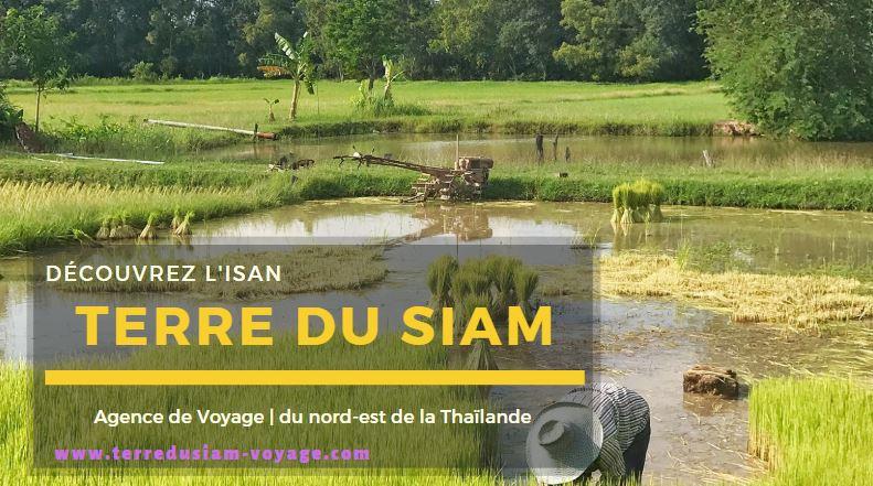 Terre-du-Siam-1